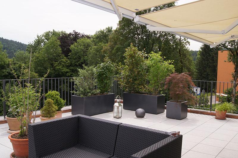 terrassengestaltung raschle blumen pflanzen garten. Black Bedroom Furniture Sets. Home Design Ideas