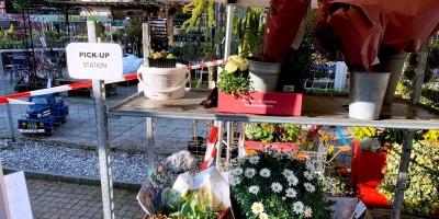 Pick-Up Wädenswil und Langnau