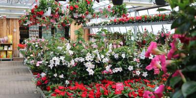 Langnauer Blumentage